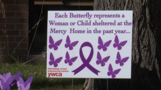 Purple foam butterflies on the lawn of the YWCA office in Great Falls
