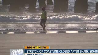 Stretch of Oceanside coastline closed after shark sighting