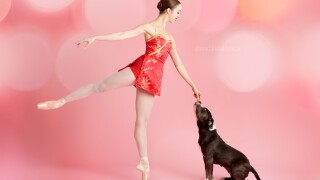 The 'Muttcracker' project pairs dancers with rescue pets hoping to be adopted