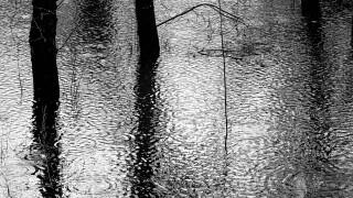 rain-178040_1920.jpg
