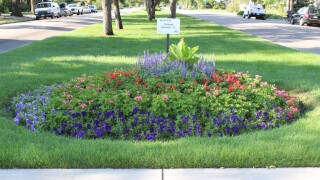 Springs in Bloom adopt a flower bed program