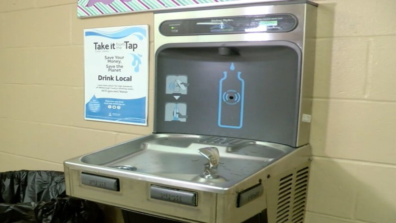 Stay hydrated without using plastic bottles