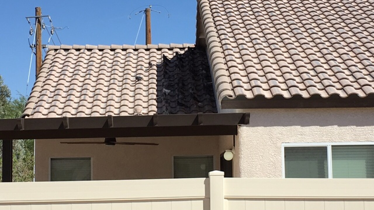 Pigeon problems plague Las Vegas neighborhood