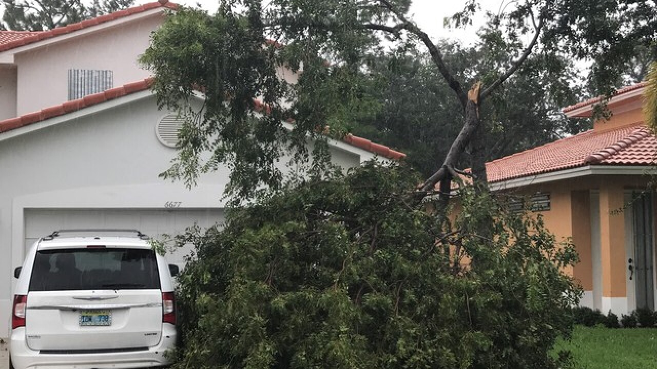 Hurricane Irma leaves 4 million without power