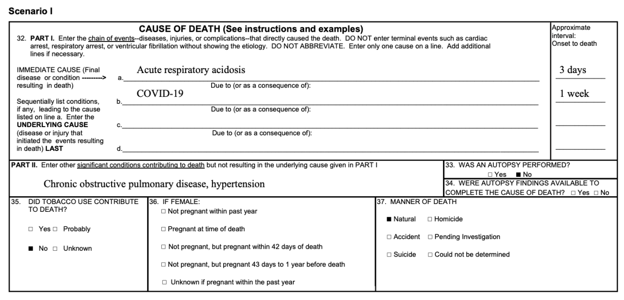 CDC Cause of Death Report Example 1