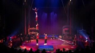 circus vargas.jpg