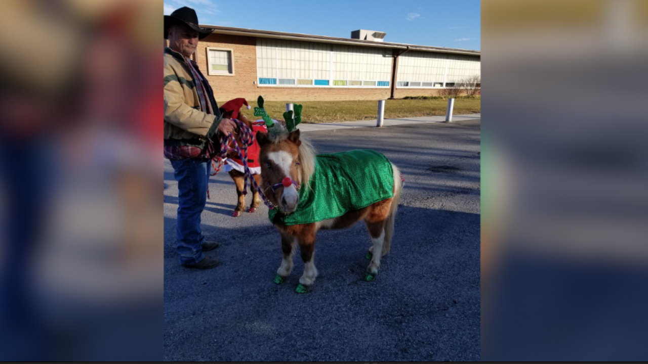 A Missouri couple's beloved miniature horse was fatally shot and mutilated. They want answers