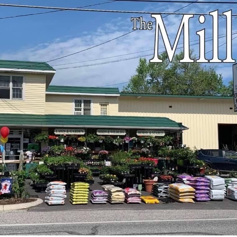 the mill1.jpg