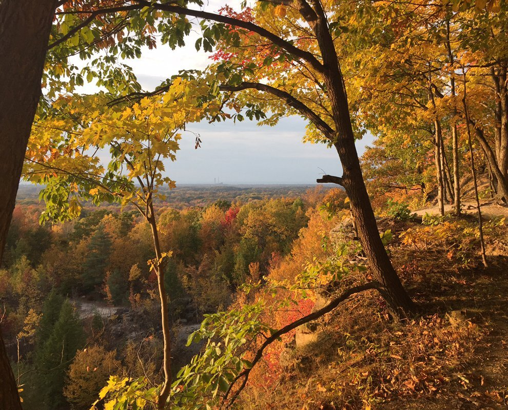 Chapin-Forest-Reservation-fall-overlook-web-Brian-Fowler (1).jpg