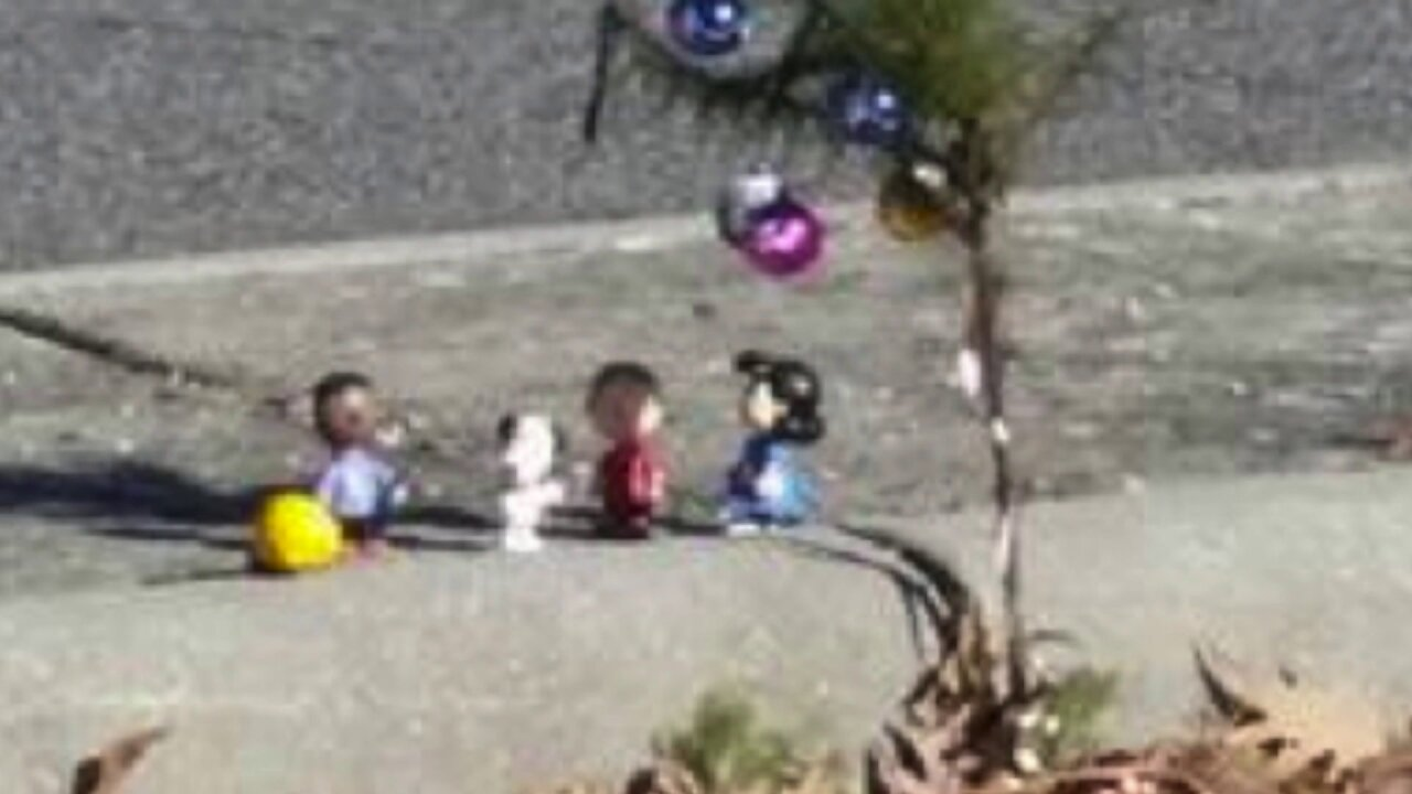 'Charlie Brown Christmas' tree characters stolen from Chesterfield median
