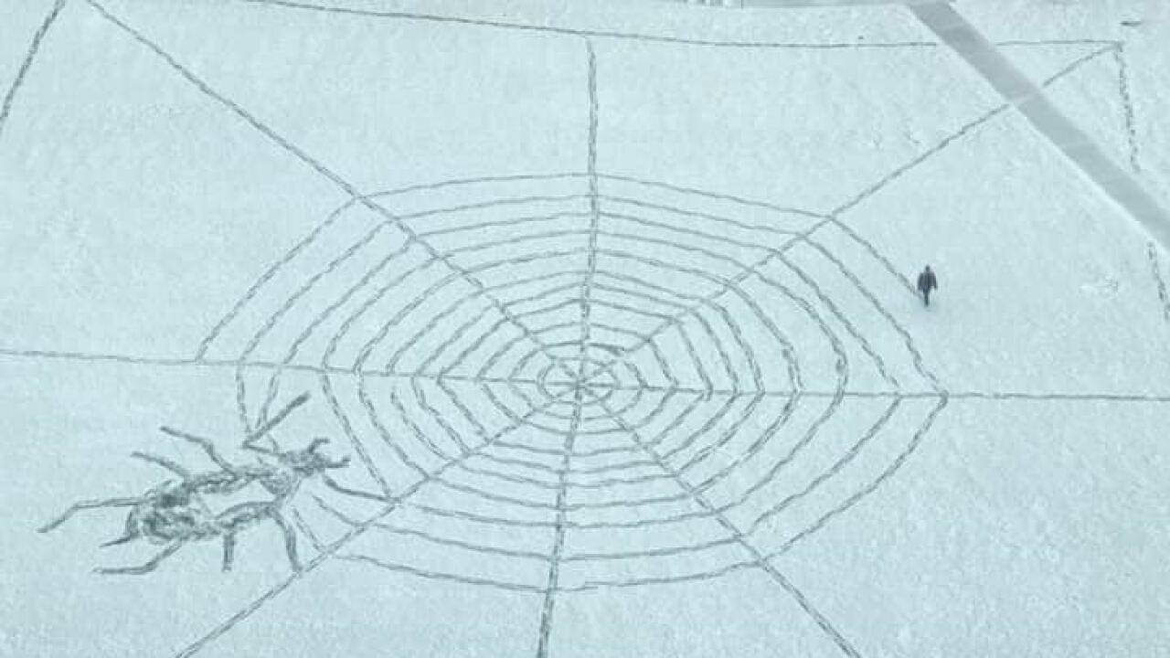 spider man mall b.jpg