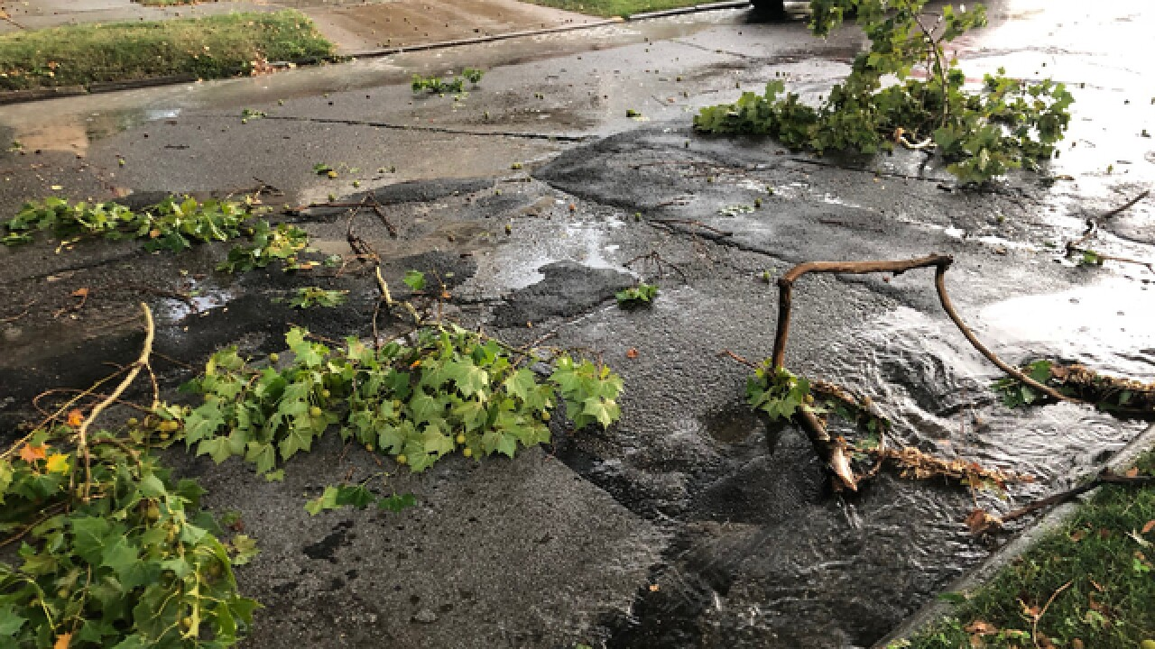 Storm causes damage across Cuyahoga Co.