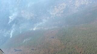 Wildfire Watch Thorne Creek