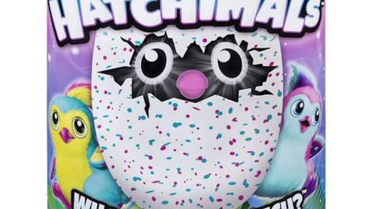 Hatchimals lawsuit: Parents sue over 'unhatched,' 'defective' toy