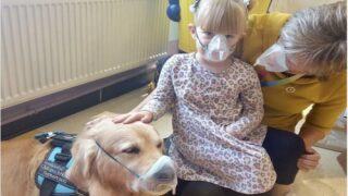 These Hospital Therapy Dogs Show Kids That Medical Procedures Aren't So Scary