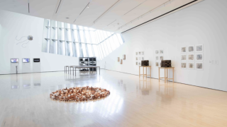 Seeds of Resistance Installation