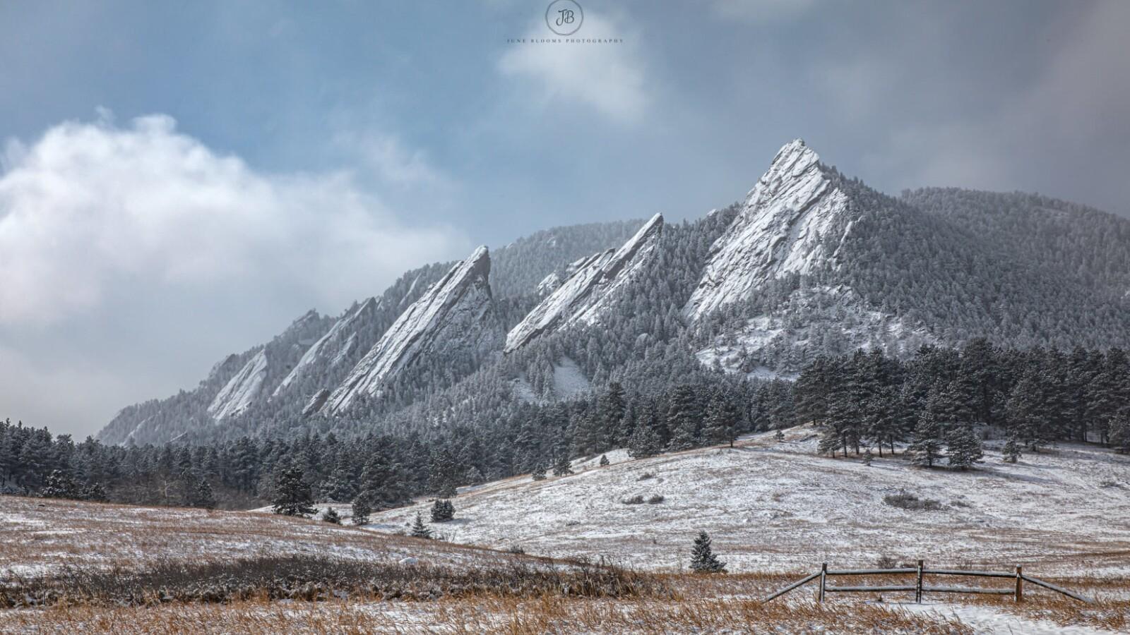 Boulder Flatirons June Blooms Photography.jpg