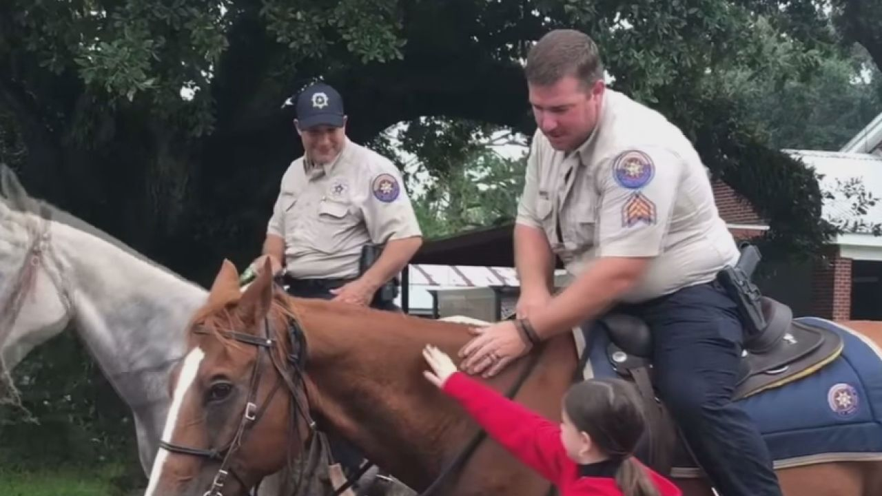 Iberia Parish Sheriff's Office runs trial trot with horse patrol