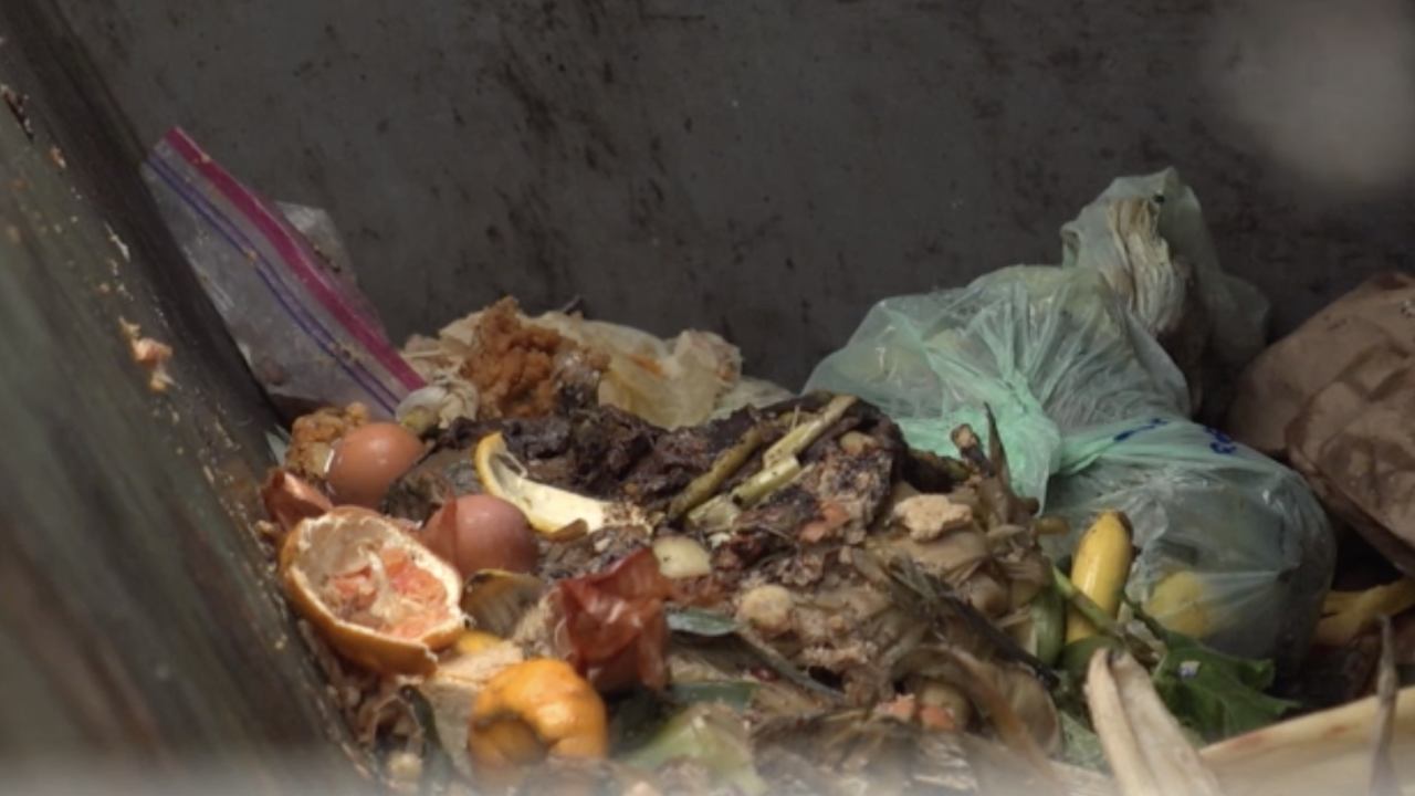 Vermont becomes first state to ban food waste from trash