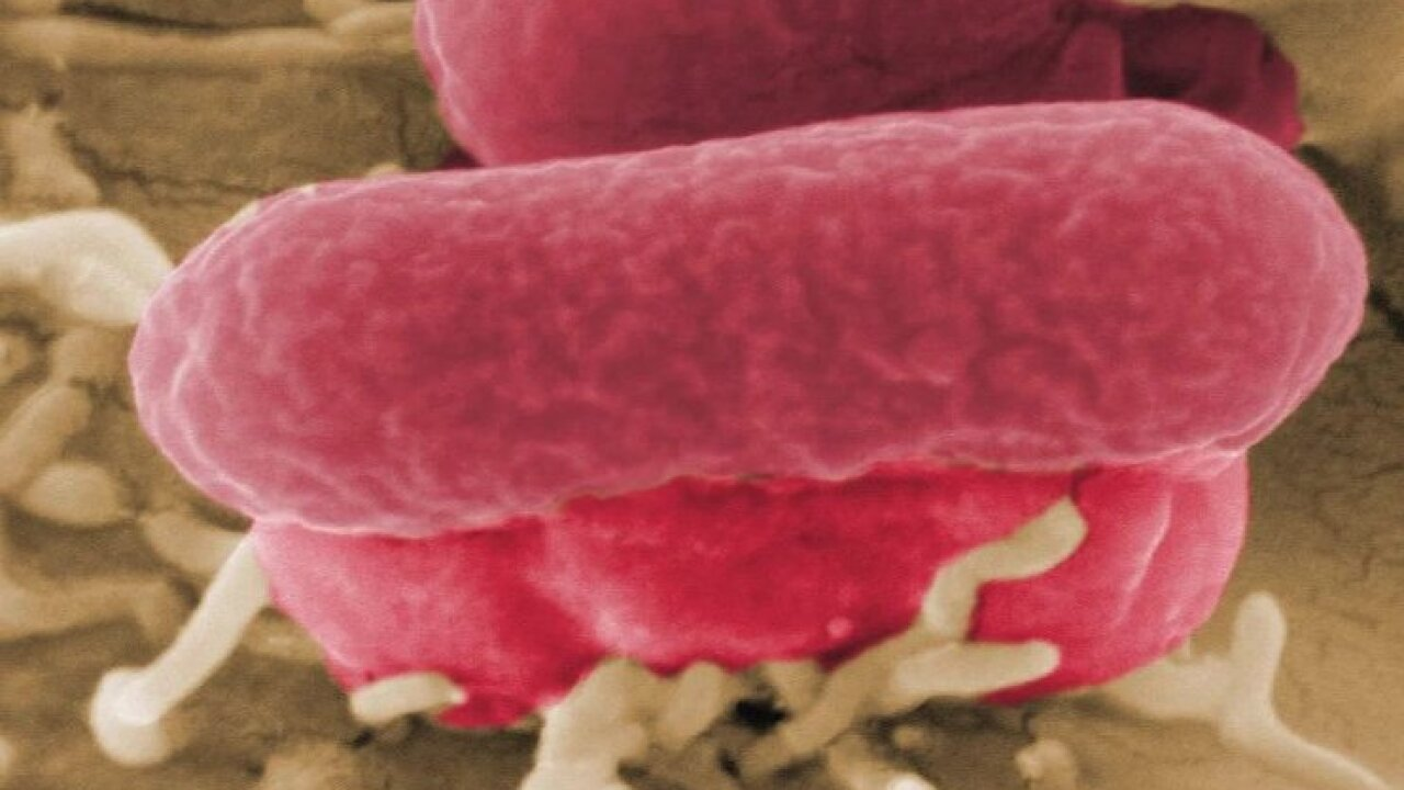 E. coli outbreak from tainted ground beef expands to 10 states