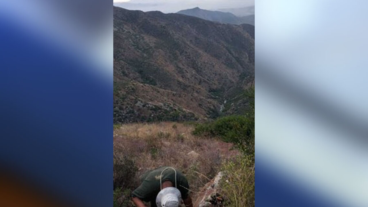 CBP rescues stranded undocumented immigrant from mountain, man greeted agents with thumbs up