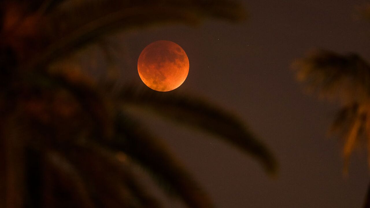 A 'super blood wolf moon' and five eclipses are among 2019's major