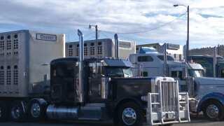Montana Ag Network: New spending bill includes ELD delay for livestock haulers