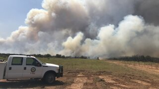 Wildfire _Texas A&M Forest Service.jpg