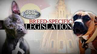 Breed Specific Legislation 360