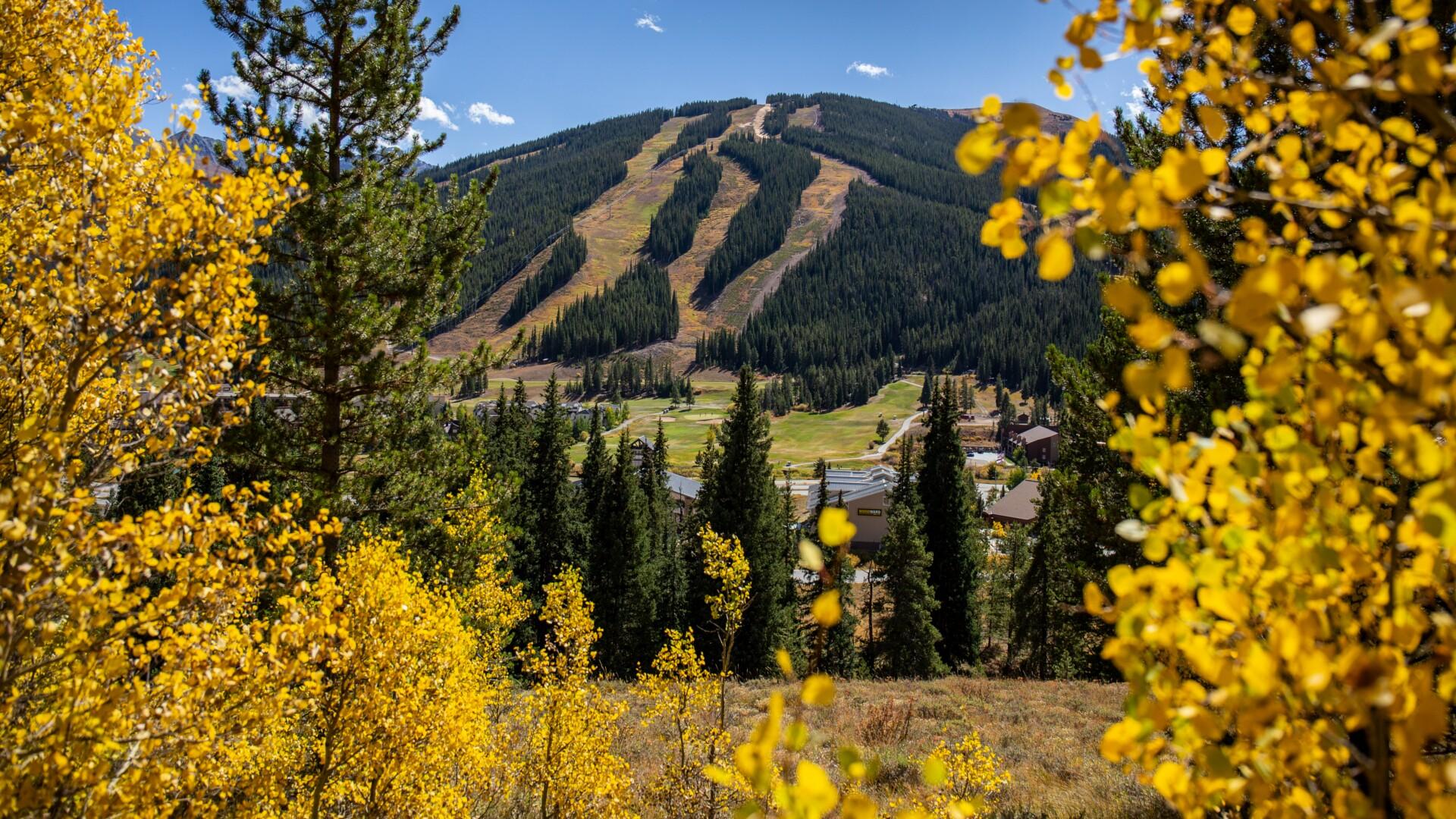 Curtis DeVore - Copper Mountain.jpg