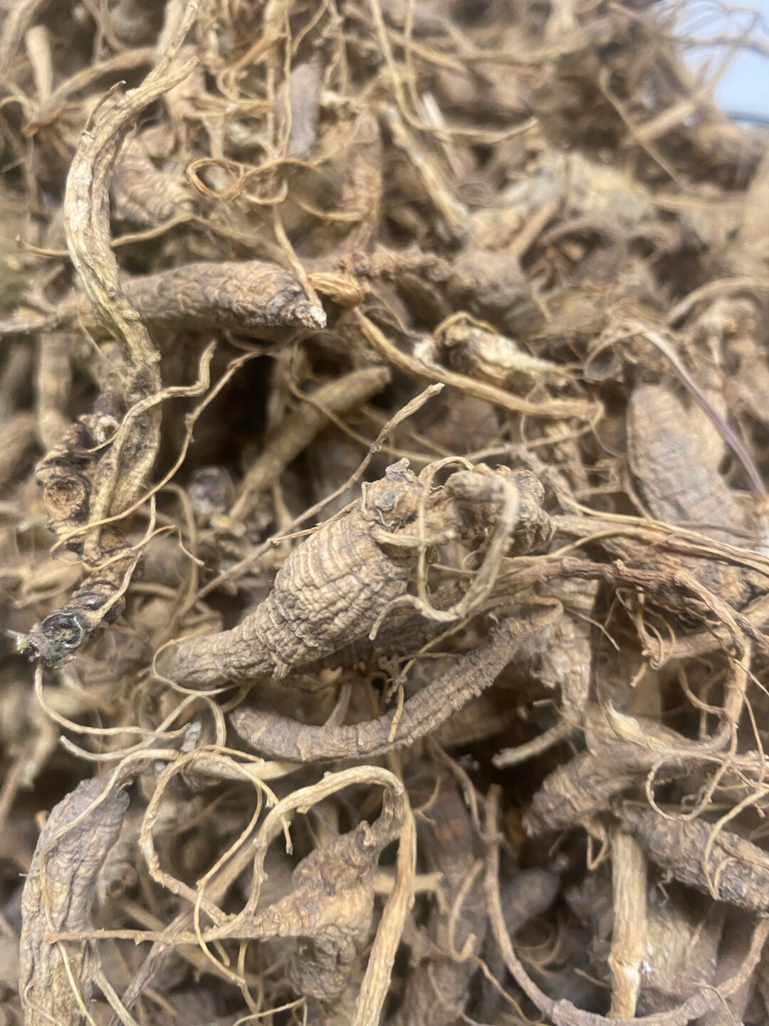 Dried ginseng