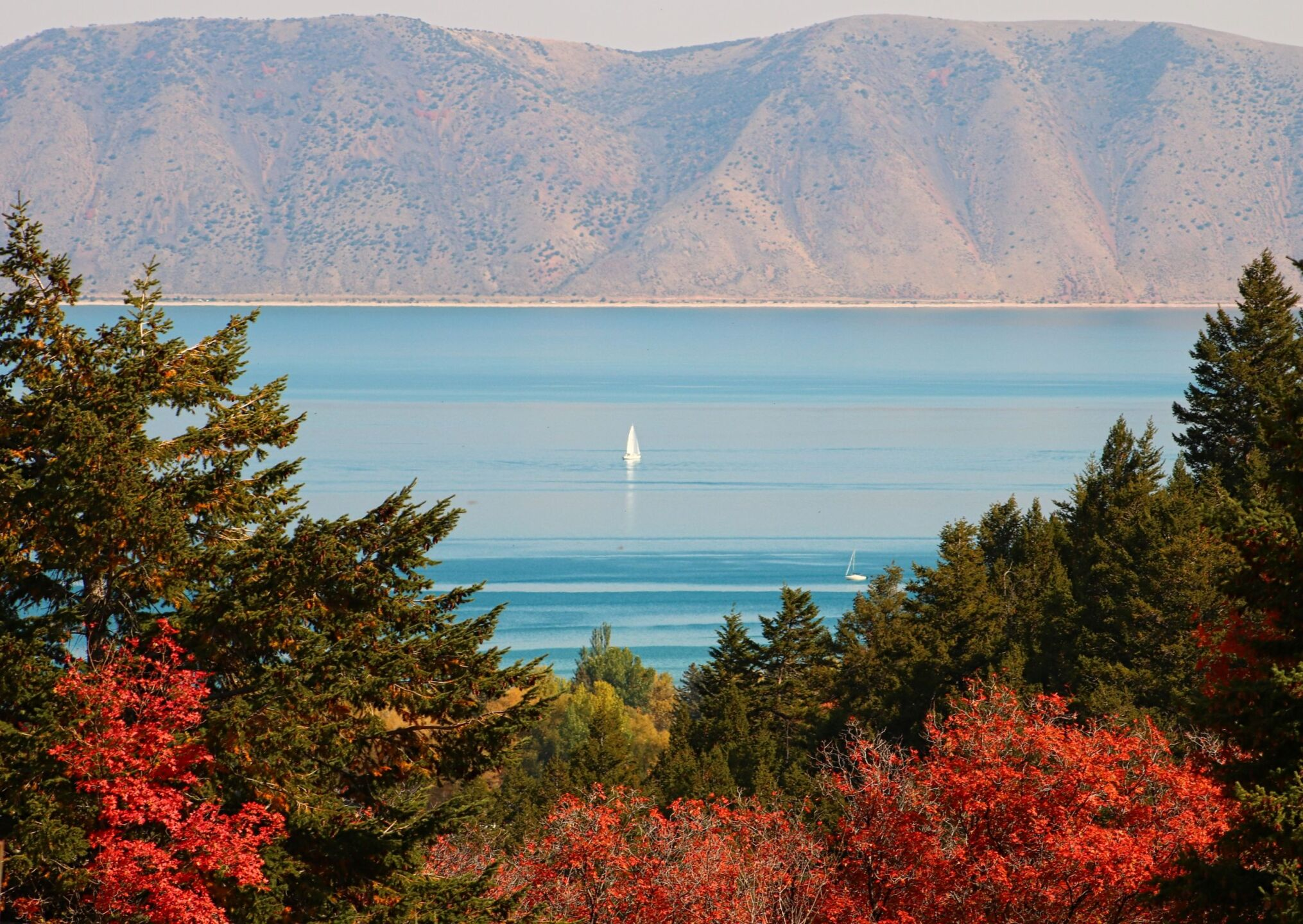Carol Dyer Bear Lake valley (10).jpg