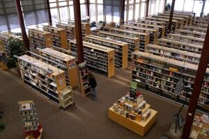 Fee Free Library.jpg