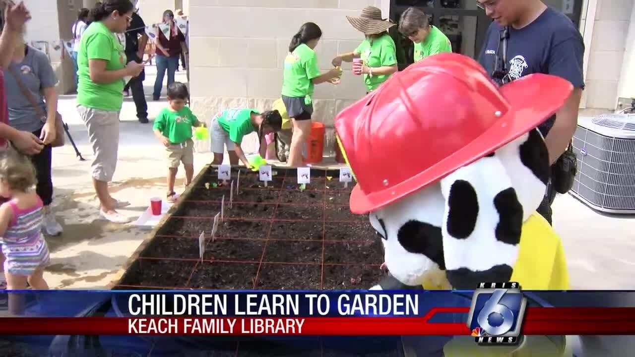 Rainbow Children's Garden