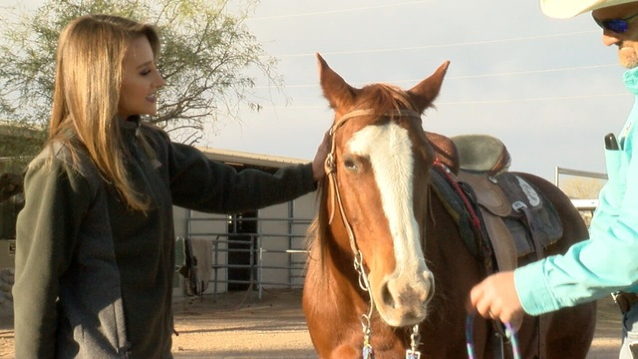 Tucson ranch open to public, focuses on family