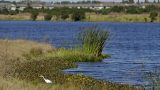 EPA Water Rule