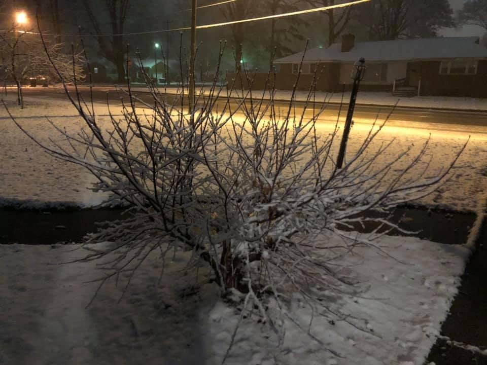 Lee Hall area of Newport News (Lisa Campbell).jpg