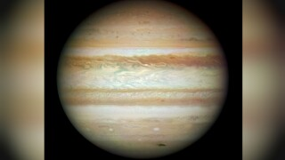 This month, you can see Jupiter and its largest moons with just your binoculars