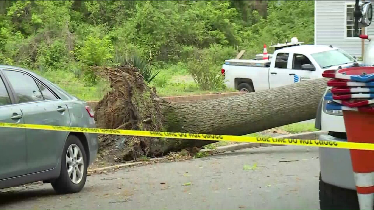 First line of storms down trees, powerlines in Richmond: 'It sounded like an explosion'