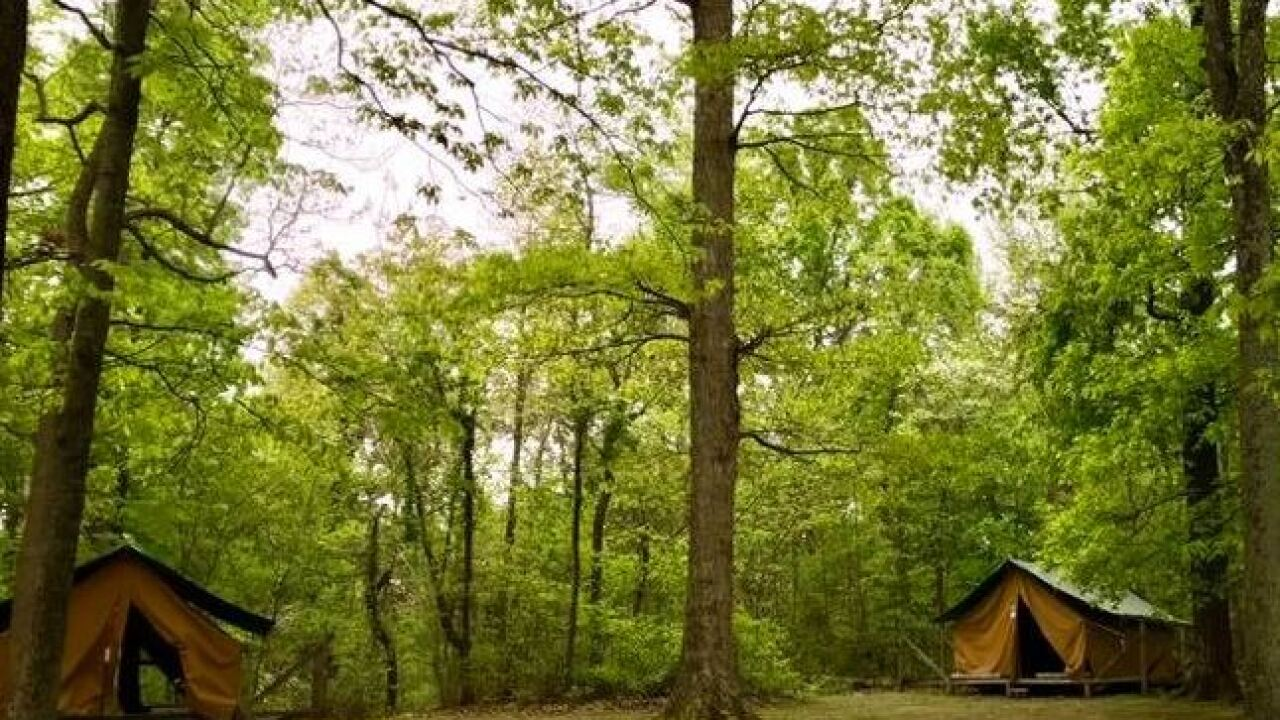 Girl Scout killed, 3 others injured by fallen tree at Camp Koch