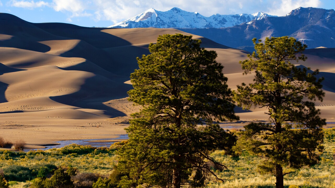 Great Sand Dunes National Park and Preserve 40.jpg