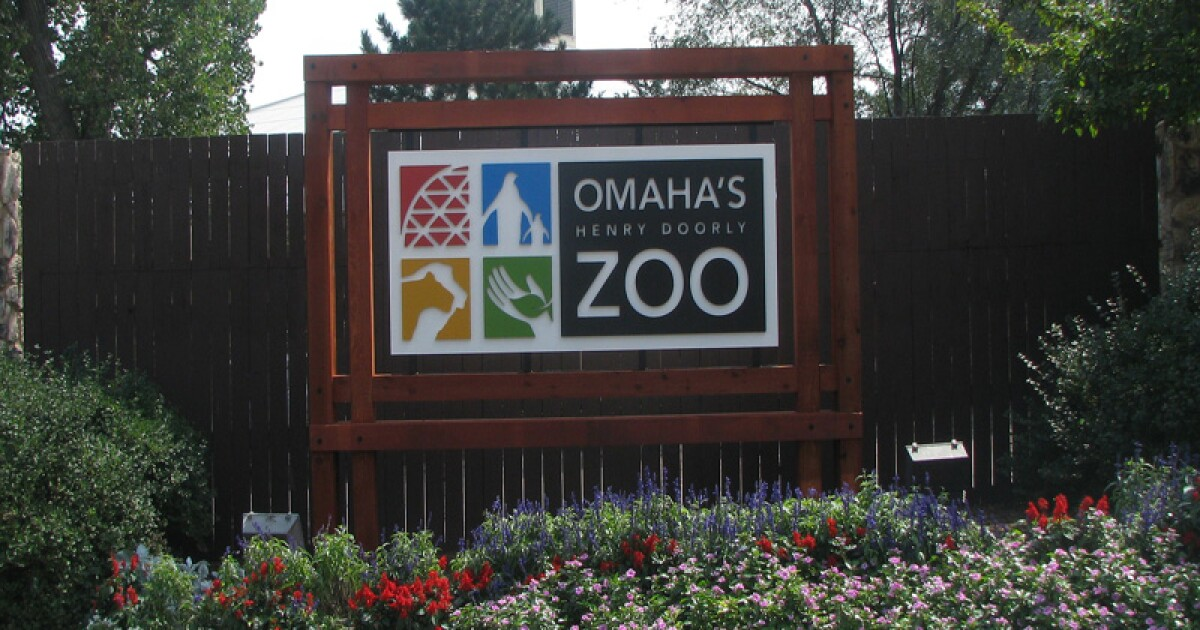 If you're spring cleaning, the zoo will take tree branches