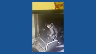 Bloomington Suspect.jpg