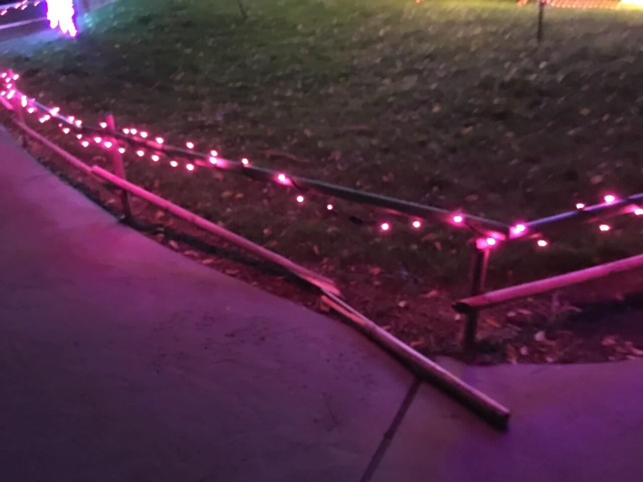Hogle Zoo Boo Lights