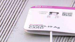 Rapid COVID-19 tests can produce false-negative results and that's why PCR tests are used as well