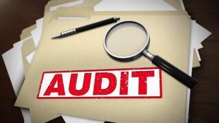 audit-mgn.jpg