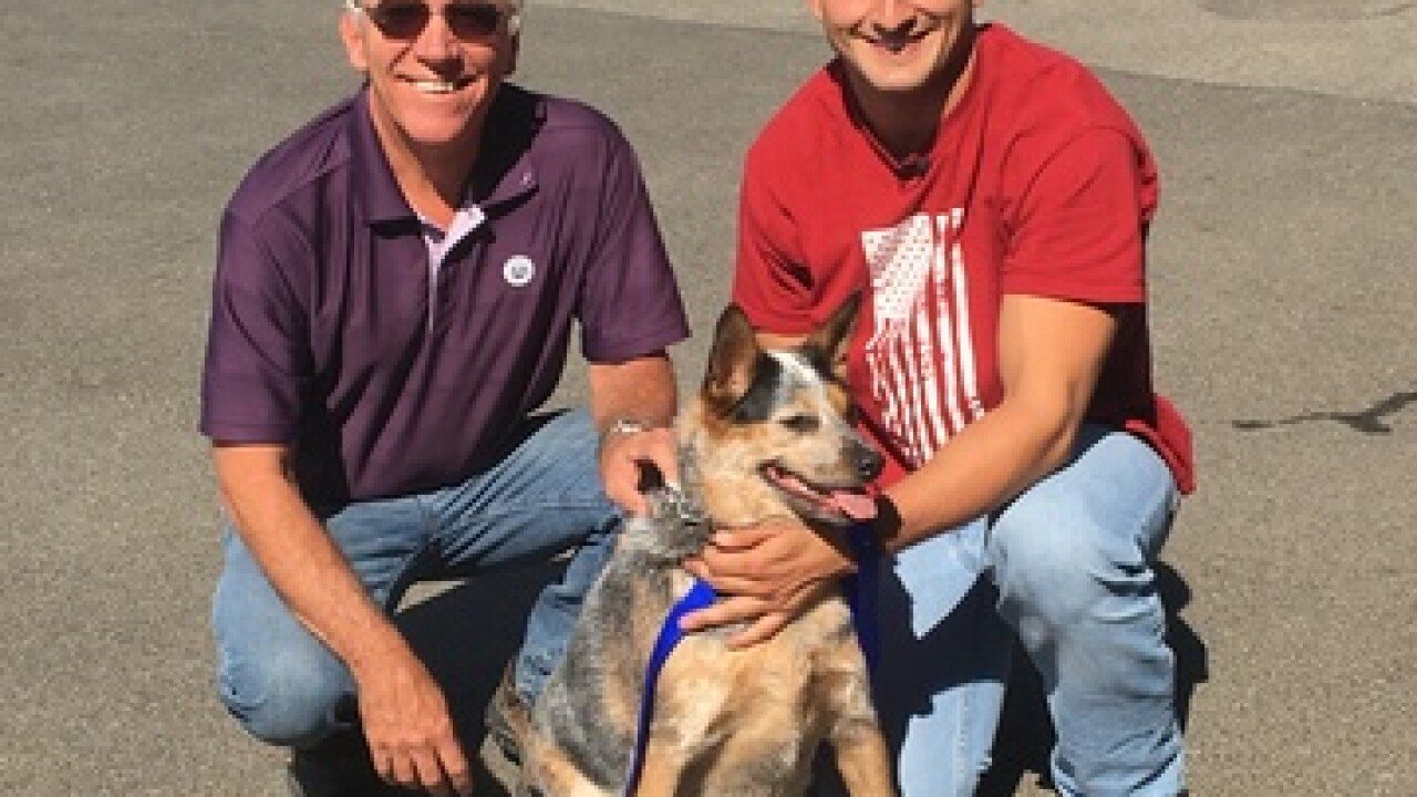 Soldier Reunited With Dog After Lengthy Deployment