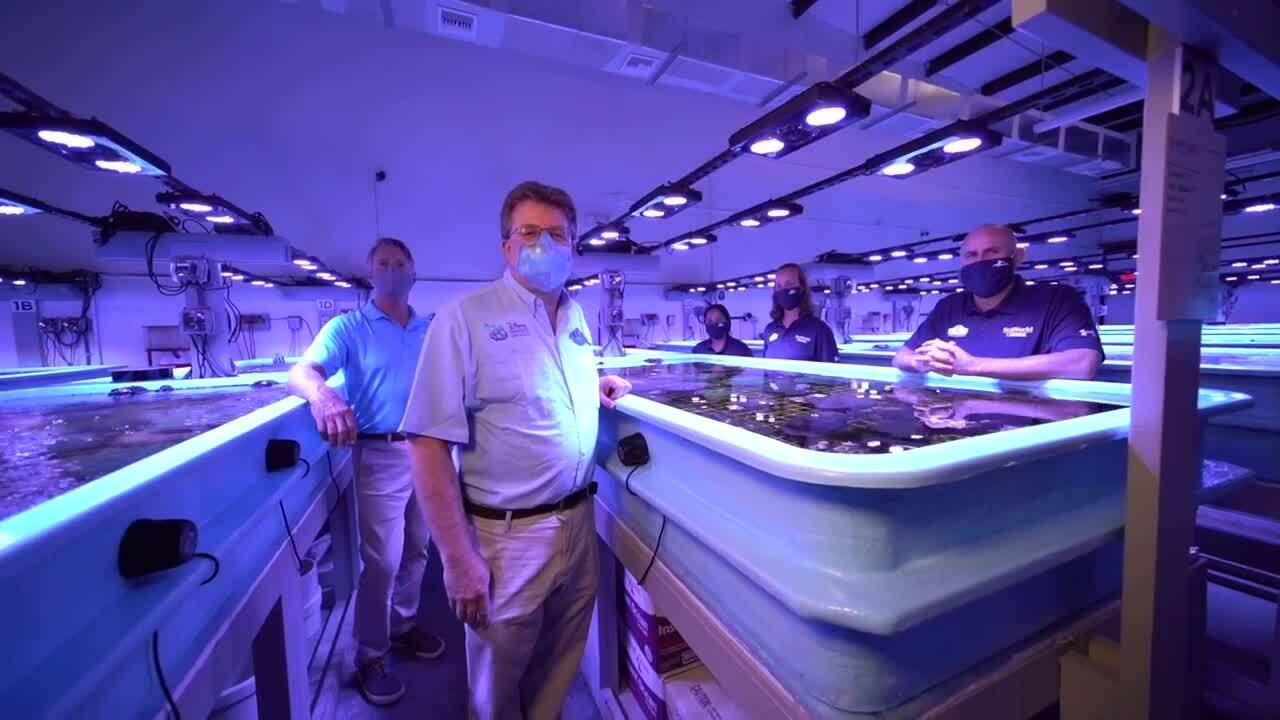 Florida Coral Rescue Center team poses