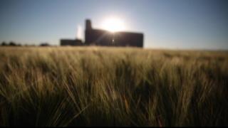 Montana Ag Network: Anheuser-Busch Foundation donates to Montana Fire Alliance For Farm Safety