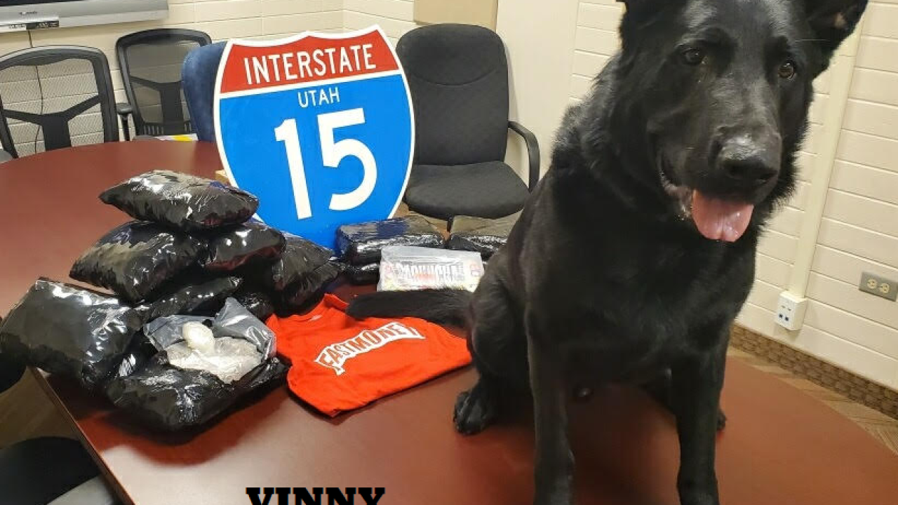 Police dogs help locate 27 lbs of drugs on Greyhound bus